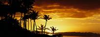 Hawaiian cruise packages in Maui